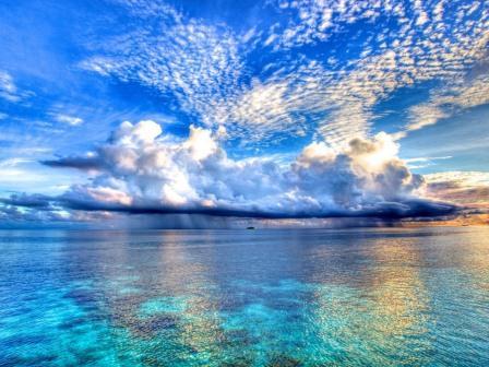 Мировой океан. Загрязнение воды на планете