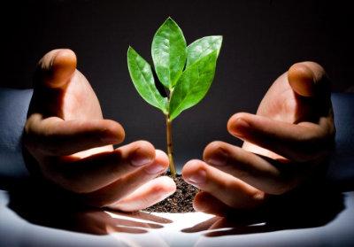 Необходимость беречь экологию