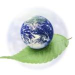 Охрана окружающей среды. Влияние человека