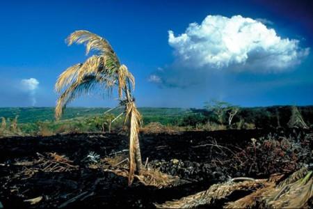 Загрязнение литосферы. Основные источники