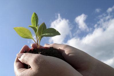 Как сохранить естественный баланс?