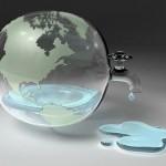 Корм для животных – причина истощения запасов пресной воды