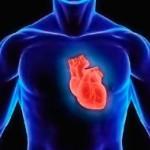 Заболевания сердца. Как их можно предотвратить?