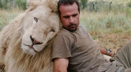 Защита львов. Животные под угрозой