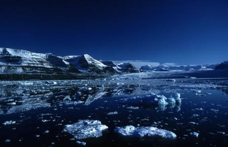 Арктика. Суровый и жестокий мир северной природы