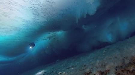Уникальная подводная съёмка местного подводного мира