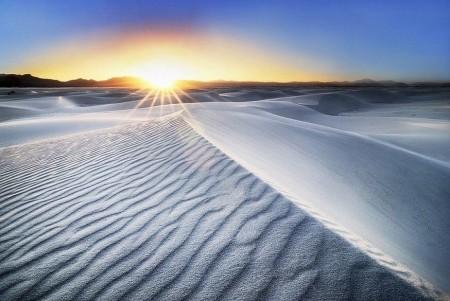 Белая Пустыня: удивительные обитатели Египта