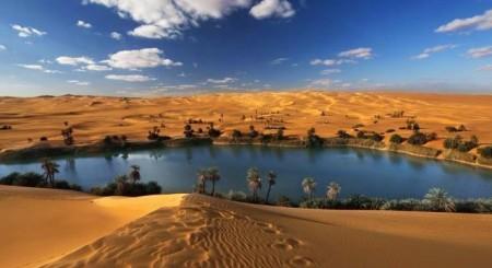 Оазис в пустыне. Частичка жизни в суровом мире