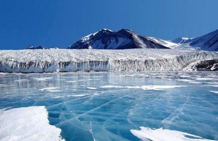 Морской лед. Рецепт выживания в Арктике
