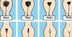 Женский бобрик – «Бобрик» или «персик»? Мужчины об интимных стрижках